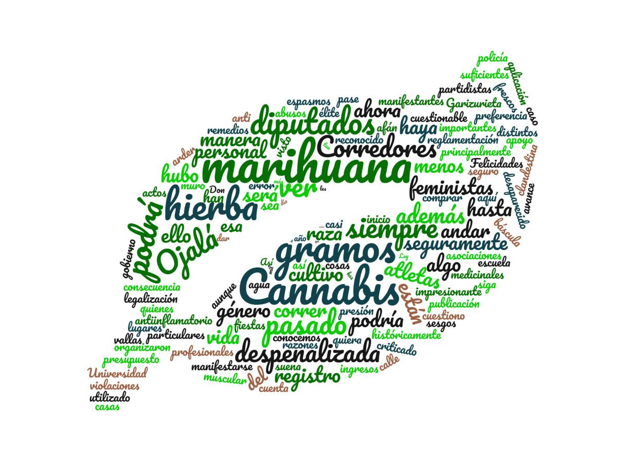 Cannabis para todos