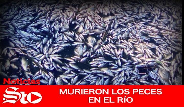 Mueren peces en el Río Tunal