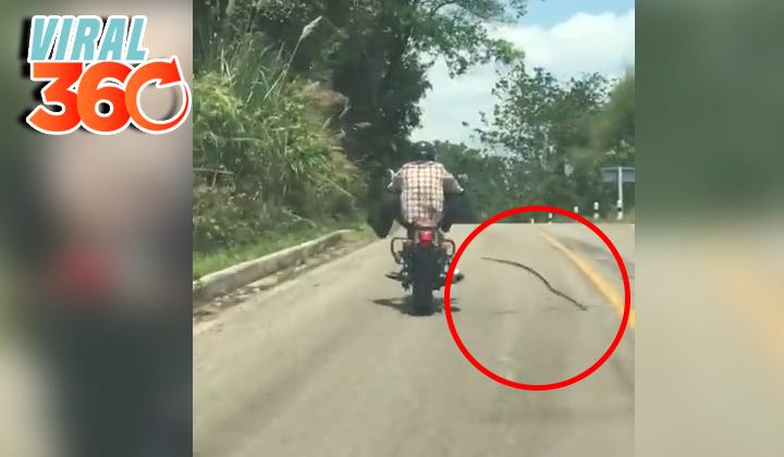 Los peligros de viajar en motocicleta por Tailandia