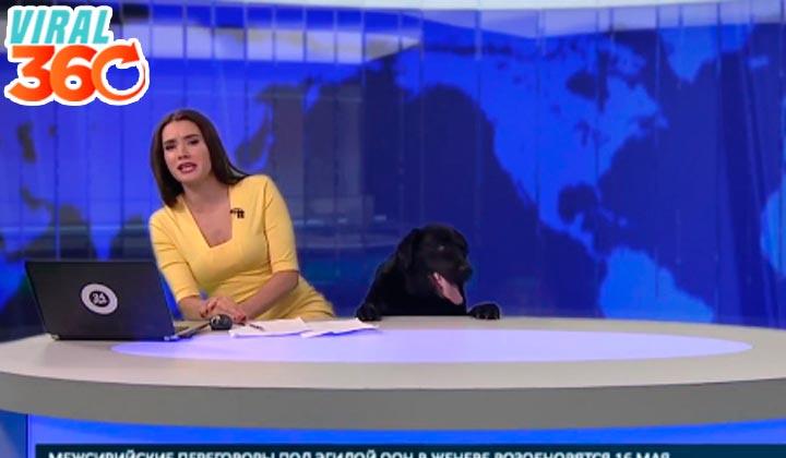 Una inesperada visita en las noticias
