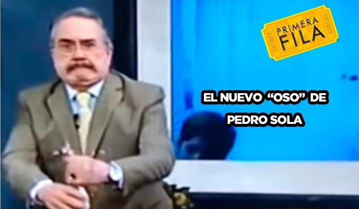 El nuevo 'oso' de Pedro Sola