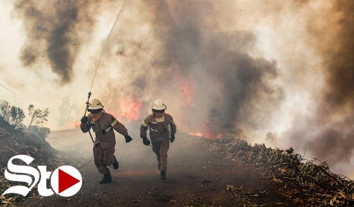 Incendio en Portugal deja 62 muertos