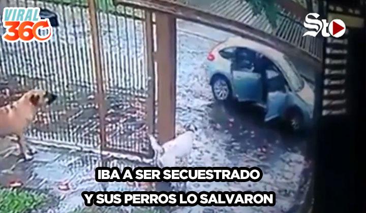 Unos perros espantaron a sus secuestradores