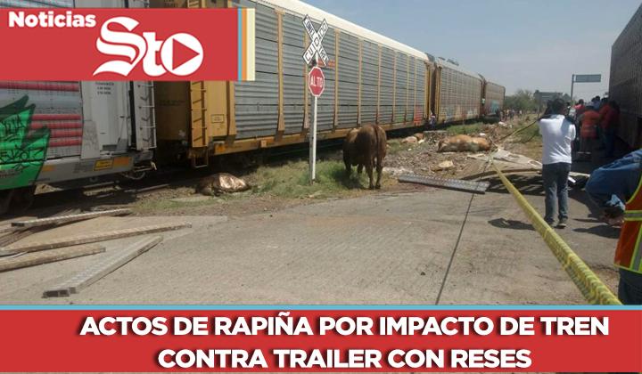 Actos de rapiña por impacto de tren contra trailer con reses