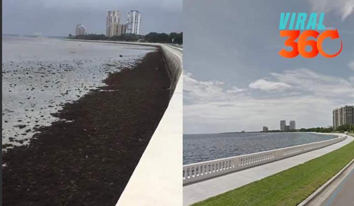 'Irma' hace desaparecer el mar de la costa de Florida