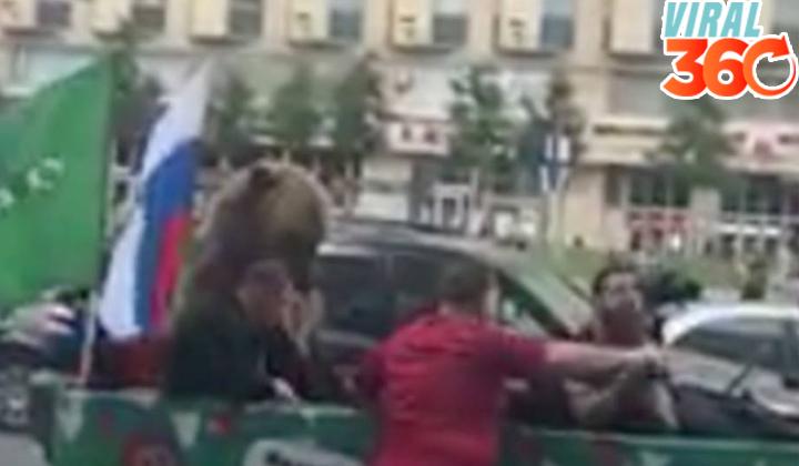 Oso real saluda y toca la trompeta en Rusia