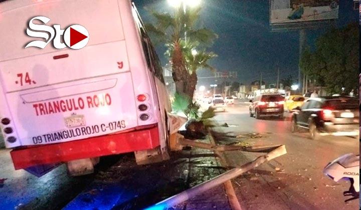 Autobús derriba palmas y una luminaria en Torreón