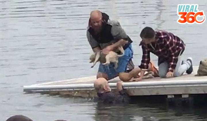 Anciano se lanza a océano para salvar a su perrito de ahogarse