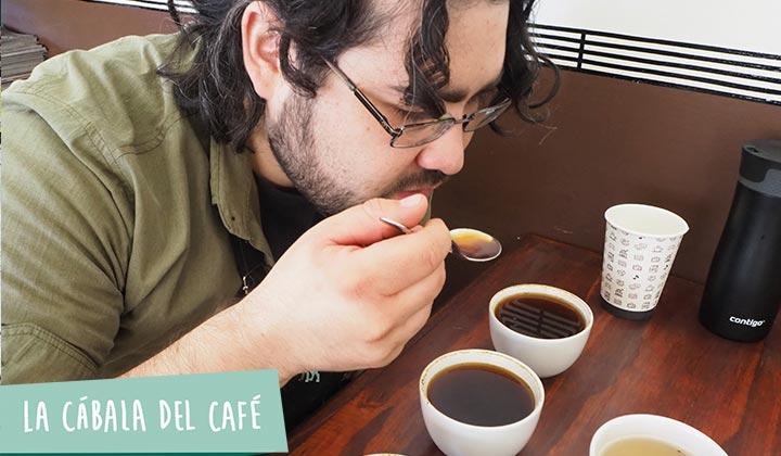 Catación de café ¿Qué es y para qué sirve?