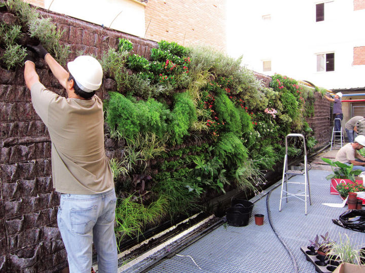 Jardines Colgantes Siglo Torreon