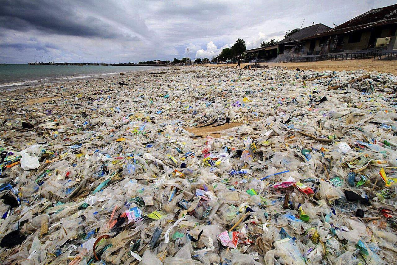 Hongo acaba con pl sticos acumulados en el mar for Plastico para impermeabilizar lagunas