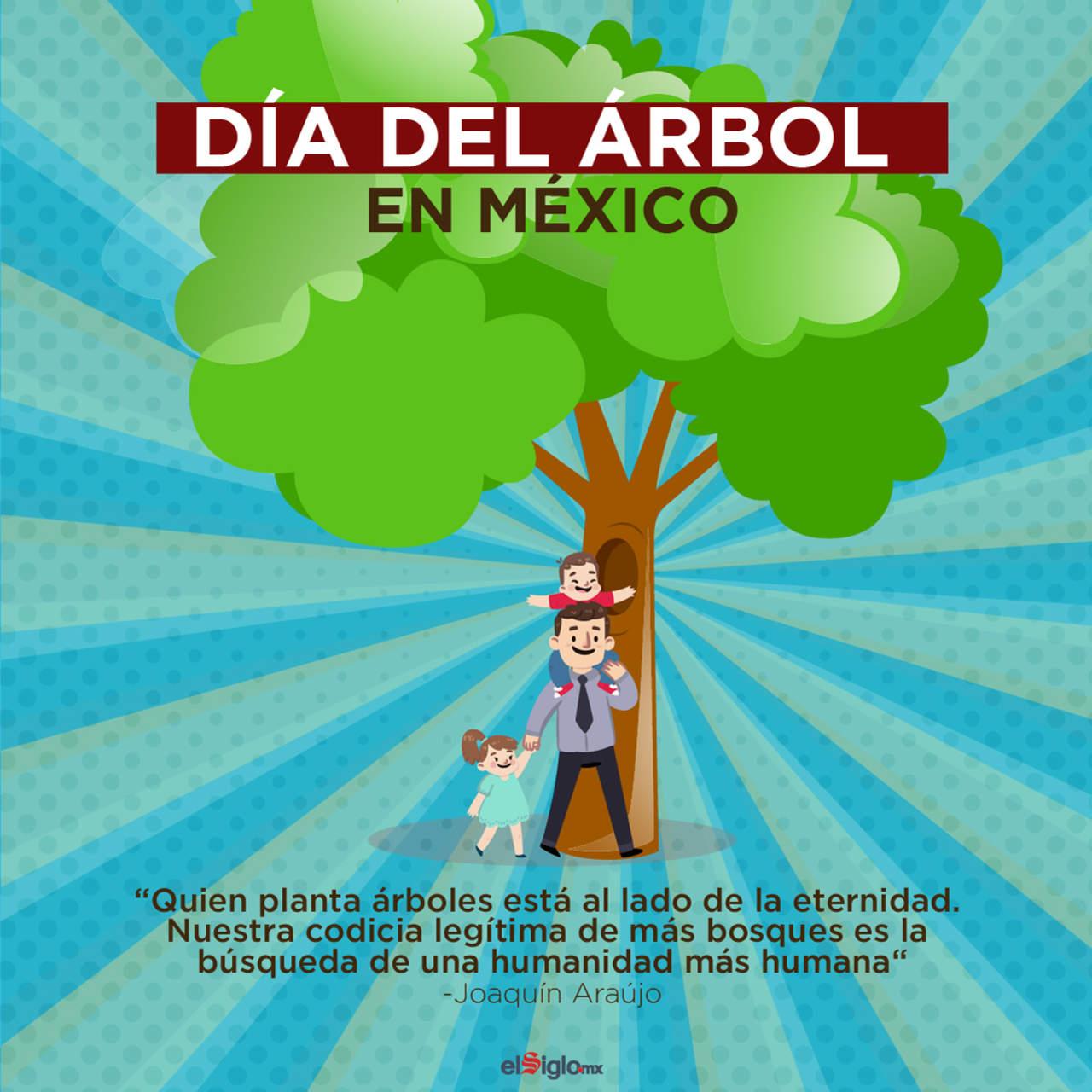 Hoy se celebra el d a del rbol en m xico for Espectaculos del dia de hoy en mexico
