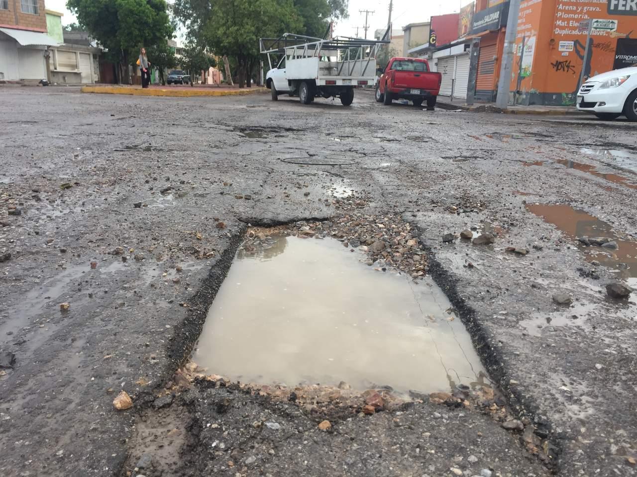 Resultado de imagen para PASEO DE LOS ALAMOS JACARANDAS