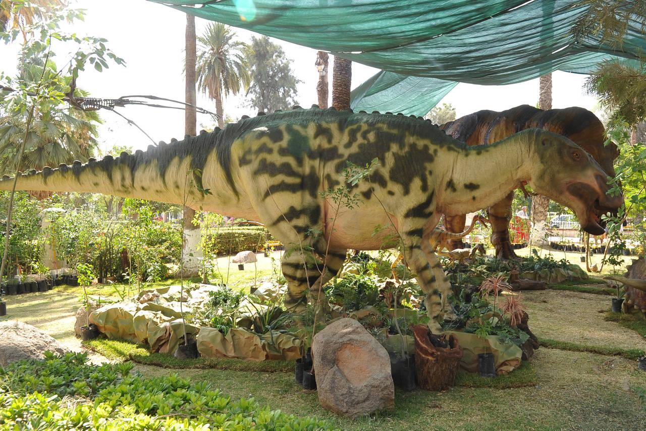 Exhibiran Dinosaurios Robotizados El Siglo De Torreon Tenemos todo tipo de gorros de navidad a crochet que te encantaran. exhibiran dinosaurios robotizados el