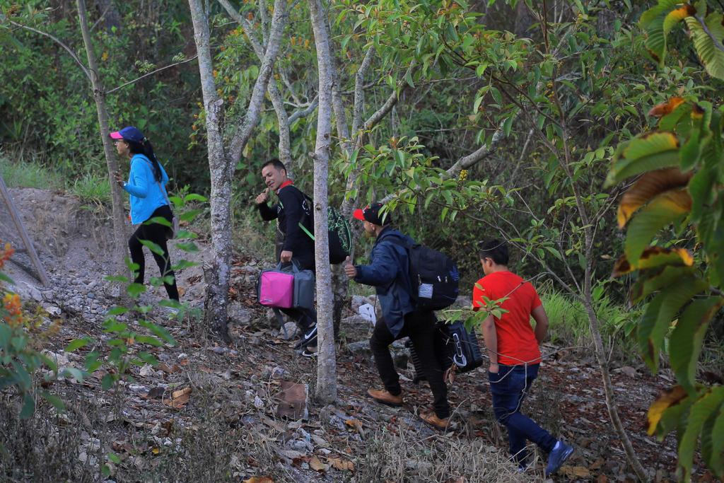 Allá no hay trabajo, por eso seguirán viniendo: dice migrante sobre caravanas. Noticias en tiempo real