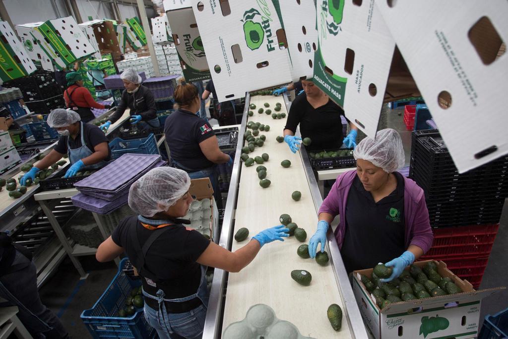 Crecen 1.1 por ciento las exportaciones en primer cuatrimestre. Noticias en tiempo real