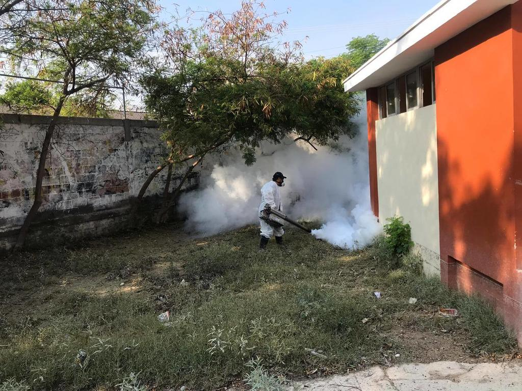 Se mantiene en cero los casos de dengue en la Comarca Lagunera. Noticias en tiempo real