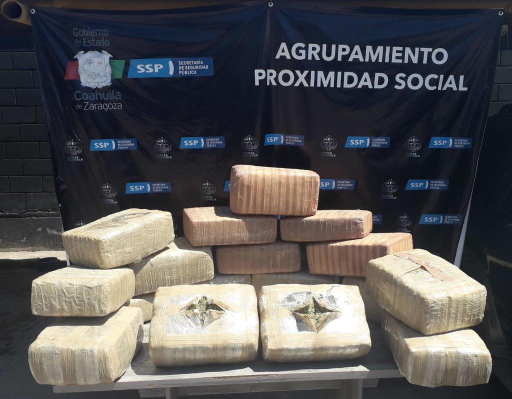Decomisan cargamento de 100 kilos de marihuana en ejido de Torreón. Noticias en tiempo real