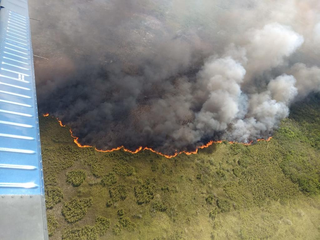 Combaten incendio en reserva natural Sian Ka'an en Quintana Roo. Noticias en tiempo real