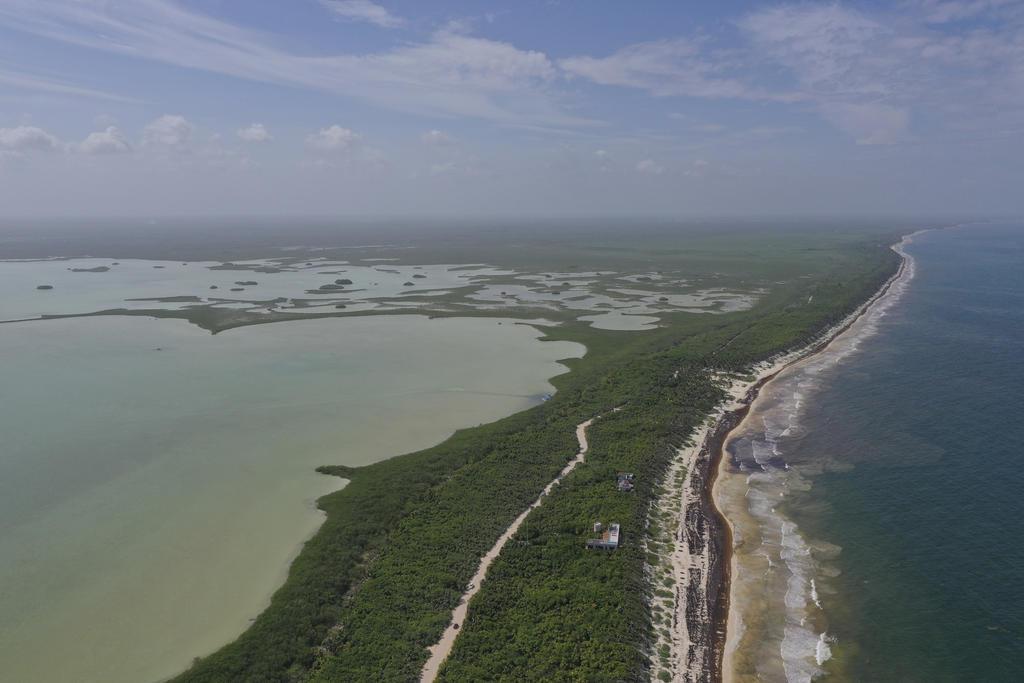 Exhortan a México a ratificar el acuerdo ambiental de Escazú. Noticias en tiempo real