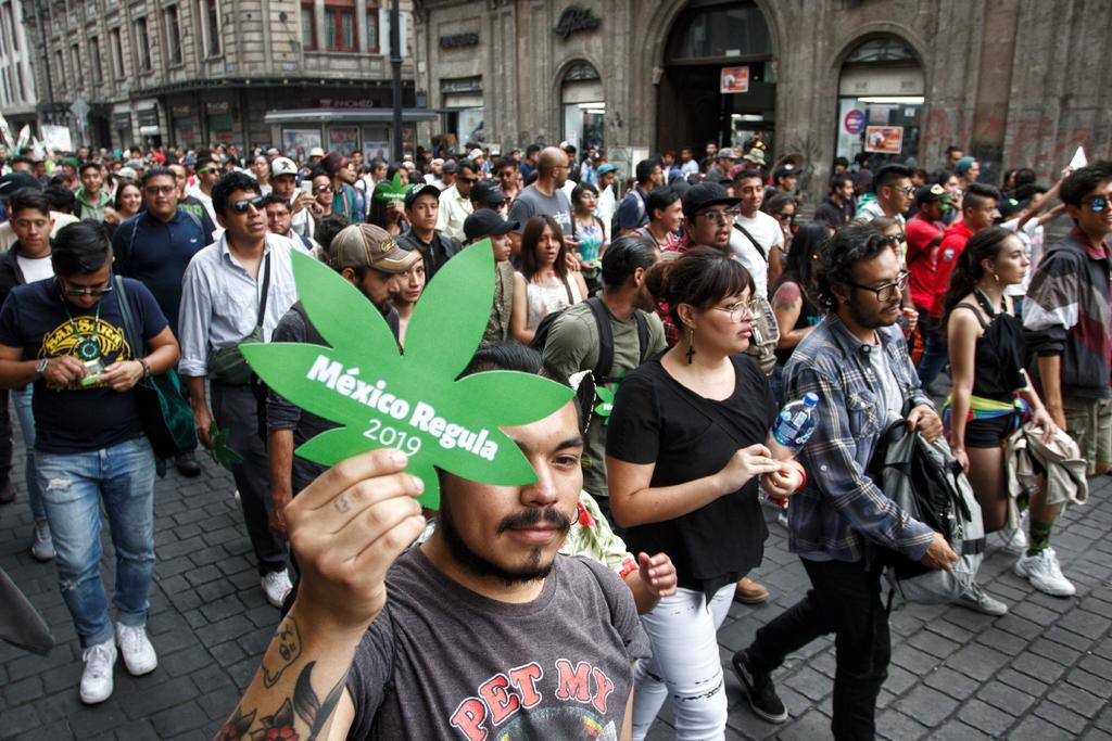 Aplicar justicia transicional para regular uso de marihuana, propone experta. Noticias en tiempo real