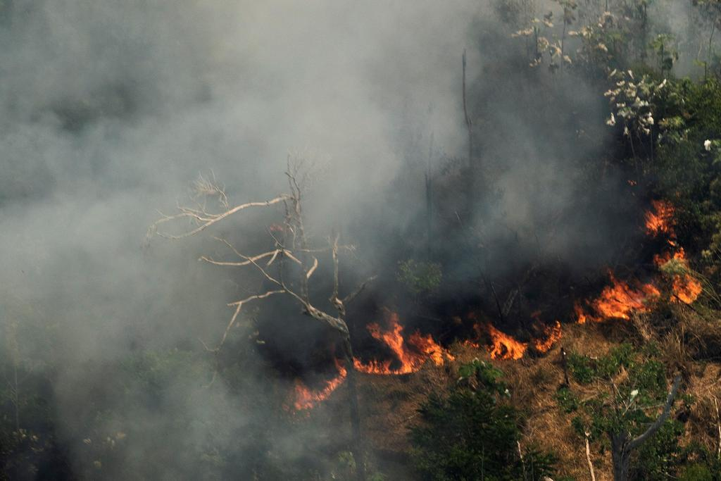 Humo de los incendios del Amazonas llega al norte de Argentina. Noticias en tiempo real