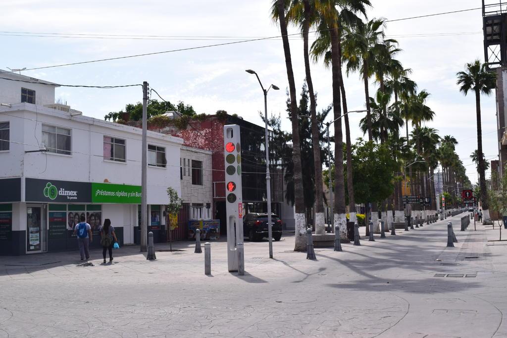 Preparan fiesta vegana y exposición de fotografía en Torreón. Noticias en tiempo real