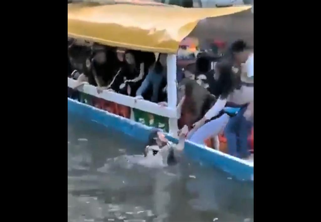 VIDEO: Graban rescate de joven tras caer de trajinera en Xochimilco. Noticias en tiempo real