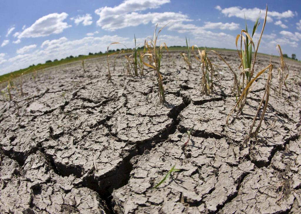 Más del 66 % del país presenta algún grado de sequía: Conagua. Noticias en tiempo real