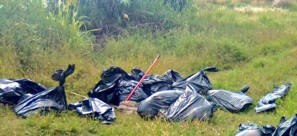 Localizan 17 bolsas con restos humanos en Jalisco. Noticias en tiempo real