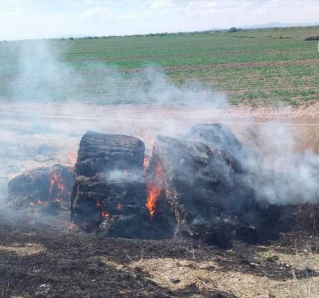 Arde carga de tráiler en Francisco I. Madero