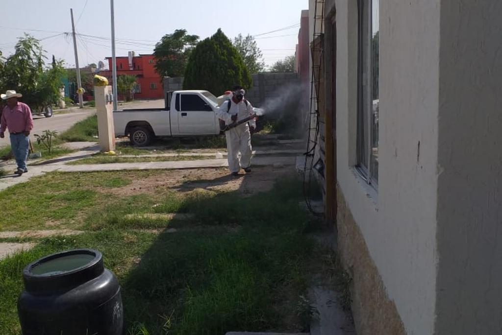 Van más de 100 casos de dengue en La Laguna de Coahuila. Noticias en tiempo real