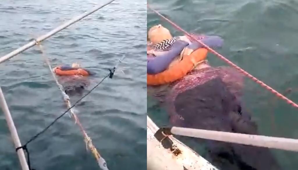 Encuentran a mujer flotando en medio del mar; tenía dos años desaparecida. Noticias en tiempo real