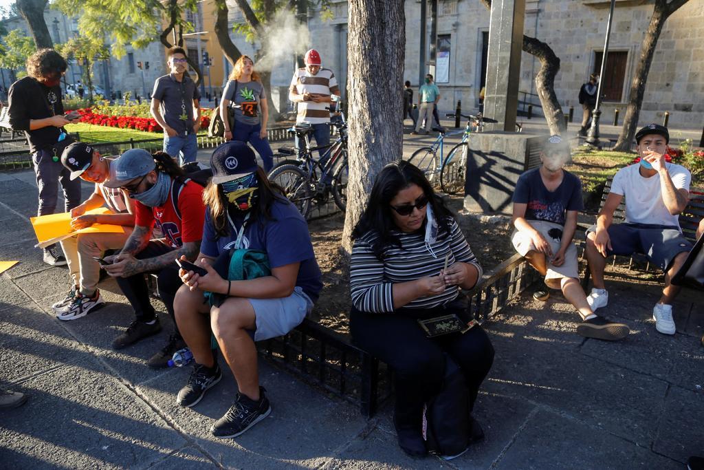 Consideran diputados Parlamento Abierto para discutir reforma a uso de marihuana. Noticias en tiempo real