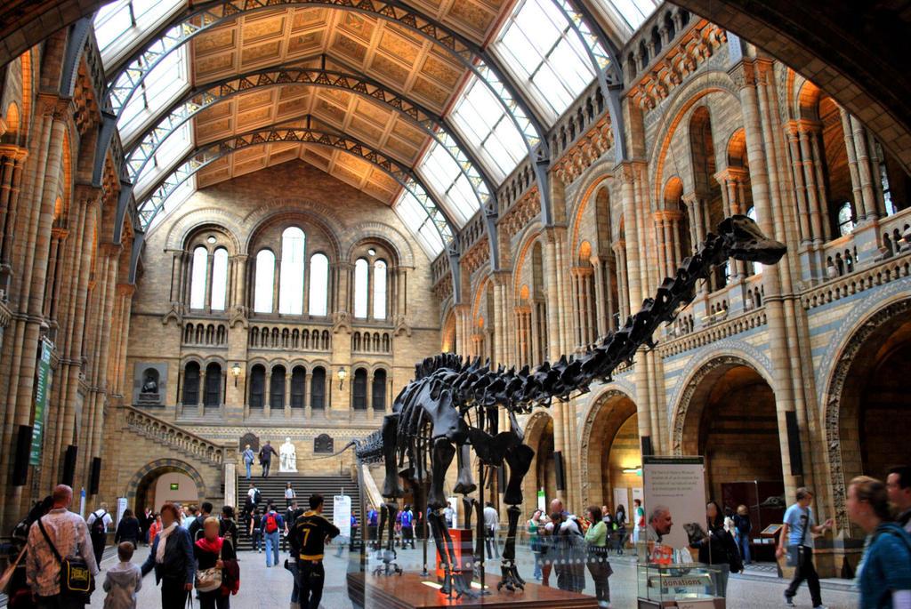 El Museo de Londres recopila sueños y pesadillas durante la pandemia. Noticias en tiempo real