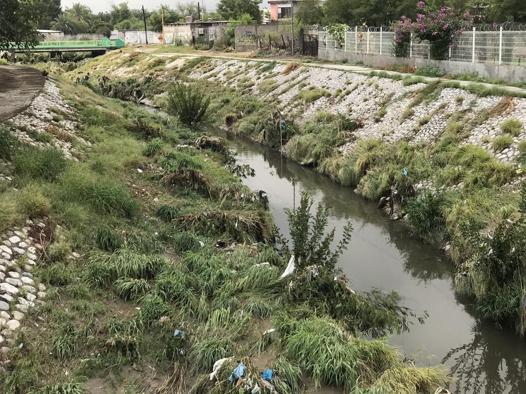 Más de 50 casos de dengue en Ciudad Frontera. Noticias en tiempo real