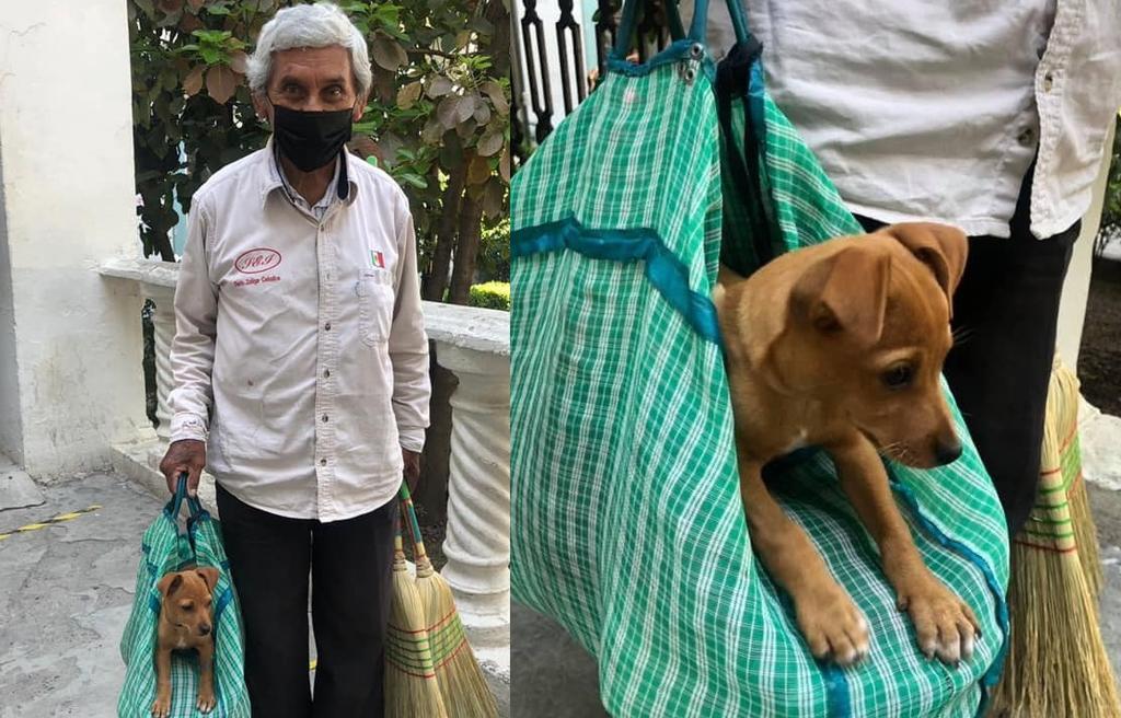 Conmueve abuelito que vende escobas en Tamaulipas junto a perrito rescatado