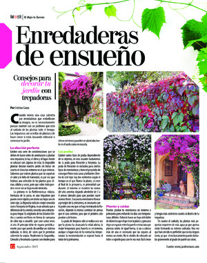 Edición impresa 06iloa14