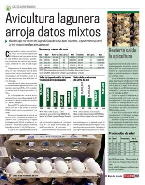 Edición impresa 31resa36