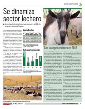 Edición impresa 31resa37